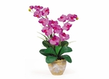 Double Phalaenopsis Silk Orchid Flower Arrangement in Orchid - Nearly Natural - 1026-OR