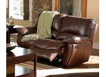 Double Reclining Loveseat in Brown Leather - Coaster