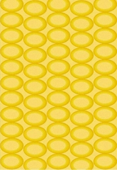 Eastern Weavers Arzu Yellow Rectangular Area Rug