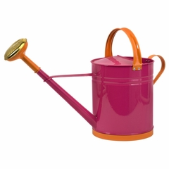 Edison Brights Large Watering Can - IMAX - 44081