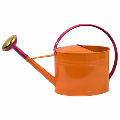 Edison Brights Oval Watering Can - IMAX - 44087