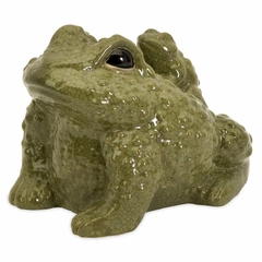 Evolve Toad and Baby - IMAX - 35250