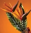 Figurine Fan - Bird of Paradise - Deco Breeze - DBF0252