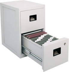 Fire Safe 2 Drawer Office File Cabinet with Full Service Delivery - Sentry Safe - 6000