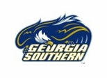 Georgia Southern Eagles College Sports Furniture Collection