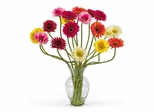 Gerber Daisy Liquid Illusion Silk Flower Arrangement in Mixed - Nearly Natural - 1086-AS