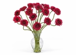 Gerber Daisy Liquid Illusion Silk Flower Arrangement in Red - Nearly Natural - 1086-RD