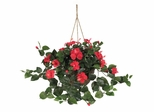 Hibiscus Hanging Basket in Red - Nearly Natural - 6614