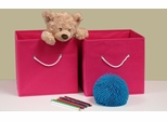 Hot Pink 2PC Folding Storage Bins Set with White Rope Handles