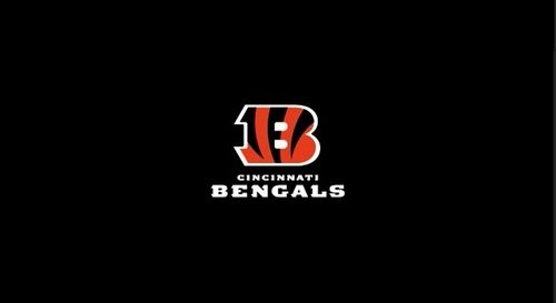 Imperial International Cincinnati Bengals 8' Billiard Cloth
