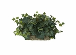 Ivy Ledge Plant (Set on Foam) Silk Plant - Nearly Natural - 6707