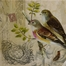 Kincaid Bird Canvas (Set of 4) - IMAX - 27577-4