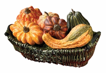 Large Gourd Assortment (Set of 6) - Nearly Natural - 4683