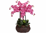 Large Phalaenopsis Silk Flower Arrangement - Nearly Natural - 1201-DP