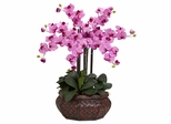 Large Phalaenopsis Silk Flower Arrangement - Nearly Natural - 1201-MA