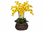 Large Phalaenopsis Silk Flower Arrangement - Nearly Natural - 1201-YL