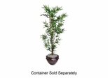 Lifelike Tree - 6' Bamboo - Green - NUDT7789
