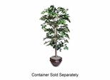 Lifelike Tree - 6' Ficus - Green - NUDT7781