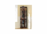 Mahogany Lighted Curio Cabinet - Holly & Martin