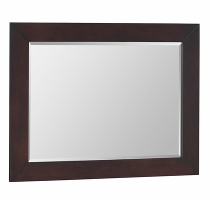 Mirror - Lifestyle Solutions - 500VI-MFR-CP