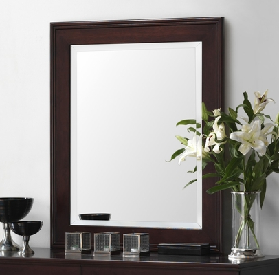 Mirror - Lifestyle Solutions - 588V-MFR-CP