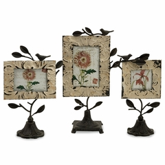 Mona Photo Frames (Set of 3) - IMAX - 27387-3