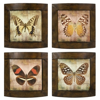 Monarch Plaques (Set of 4) - IMAX - 12872-4