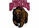 Montana Grizzlies College Sports Furniture Collection
