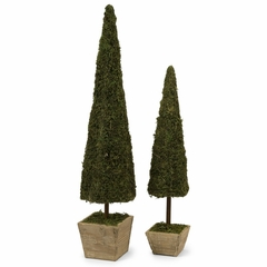 Mossy Conical Topiary (Set of 2) - IMAX - 29118-2