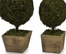 Mossy Sphere Topiary (Set of 2) - IMAX - 29121-2