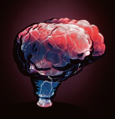 Novelty Lamp - Mini Brain Electra Lamp in Blue / Red - LumiSource - LSE-BRNSM-BR