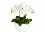 Phalaenopsis Silk Flower Arrangement - Nearly Natural - 4804