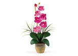 Phalaenopsis Silk Orchid Flower Arrangement in Dark Pink - Nearly Natural - 1016-DP