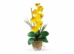 Phalaenopsis Silk Orchid Flower Arrangement in Yellow - Nearly Natural - 1016-GY