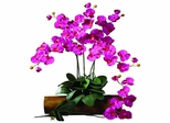 Phalaenopsis Stem (Set of 12) - Nearly Natural - 2044-BU-12