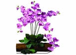 Phalaenopsis Stem (Set of 12) - Nearly Natural - 2044-MA-12