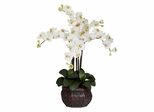 Phalaenopsis with Decorative Vase Silk Flower Arrangement - Nearly Natural - 1211-CR