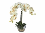 Phalaenopsis with Glass Vase Silk Flower Arrangement in White - Nearly Natural - 4643-WH