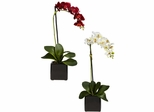 Phaleanopsis Orchid with Black Vase Silk Arrangement (Set of 2) - Nearly Natural - 4757-S2