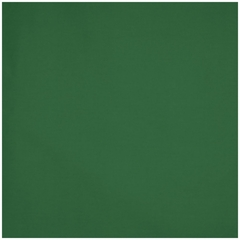 "Pillow in Hunter Green - 18"" x 18"" Solid Poly Cotton - 33-3202-602"