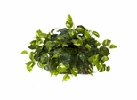 Pothos Ledge Plant (Set on Foam) Silk Plant - Nearly Natural - 6708