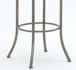 Riggler Swivel Counter Stool - Hillsdale Furniture - 4722-829