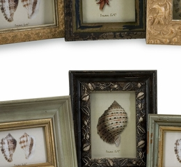 Seaside Frames - Assorted (Set of 8) - IMAX - 21109-8