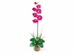 Single Phalaenopsis Liquid Illusion Silk Flower Arrangement in Beauty - Nearly Natural - 1104-BU