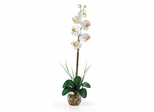 Single Phalaenopsis Liquid Illusion Silk Flower Arrangement in Cream - Nearly Natural - 1104-CR