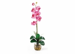 Single Phalaenopsis Liquid Illusion Silk Flower Arrangement in Dark Pink - Nearly Natural - 1104-DP