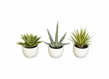 Southwest Collection (Set of 3) - Nearly Natural - 4769