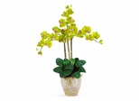 Triple Phalaenopsis Silk Orchid Flower Arrangement in Green - Nearly Natural - 1017-GR