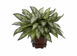 Triple Silver Queen with Hexagon Vase Silk Plant - Nearly Natural - 6696