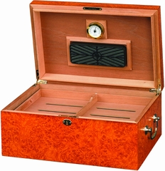 Tuscany Desktop Humidor in Light Maple Burl - HUM-100LB